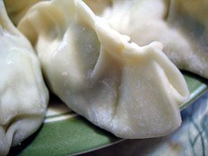 Asian dumpling
